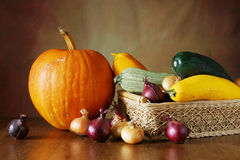 Autumn still life with a lot of various vegetables on the wood Royalty Free Stock Photography