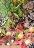 Autumn Still Life med vildblommor Lantlig stil Arkivbild