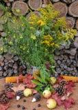 Autumn Still Life med vildblommor Lantlig stil Arkivbilder