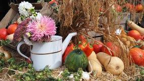 Autumn Still Life mit Blumen und Ernte lizenzfreie stockfotos