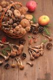 Autumn still life mushrooms on a table royalty free stock photo