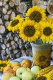 Autumn Still Life på bakgrund av vedtraven Arkivfoton