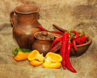 Autumn still life with peppers and pottery. Agriculture autumn still life with peppers and pottery Stock Photos