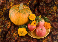 An autumn still life with pumpkin and flowers. An autumn still life with pumpkin, flowers and apples on a plate Stock Photography