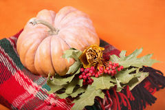 Autumn still life with pumpkin, plaid, berries and leaves on orange background. Royalty Free Stock Images