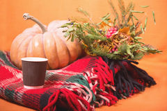 Autumn still life with pumpkin, plaid, berries and leaves on orange background. Stock Photos