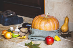 Autumn Still Life. Pumpkin and vegetables at front door Royalty Free Stock Photo