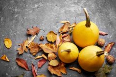 Autumn still life pumpkin with yellow leaves royalty free stock photography
