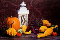 Autumn still-life with pumpkins Stock Photography