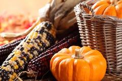 Autumn still life. With pumpkins royalty free stock photos