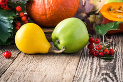 Autumn still life with pumpkins and apples. Fall harvest concept Royalty Free Stock Images