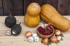 Autumn still life with pumpkins and autumn berry and vegetables on old wooden background, closeup Royalty Free Stock Photos