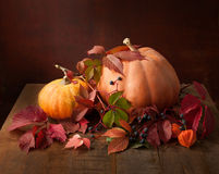 Autumn still life - pumpkins, autumn leaves  and physalis Royalty Free Stock Photo