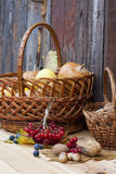 Autumn still life with pumpkins in basket and autumn berry on old wooden background, closeup. Selective focus Royalty Free Stock Photo