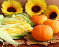 Autumn still life with pumpkins, corn, leaves  and sunflowers. Royalty Free Stock Photography