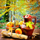 Autumn still-life with pumpkins and corn Stock Photography