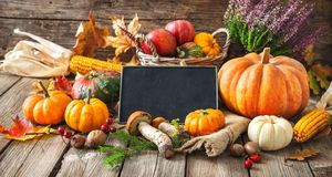 Autumn still life with pumpkins, corncobs, fruits and leaves Stock Image