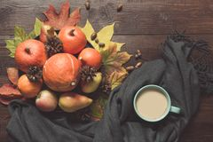 Autumn still life with pumpkins, cup of coffee, apples, warm scarf on wooden board. Copy space. Top view. Autumn still life with pumpkins, cup of coffee, apples royalty free stock photo