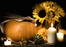 Autumn still life with pumpkins and flowers Royalty Free Stock Photo