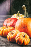 Autumn still-life with pumpkins Royalty Free Stock Image