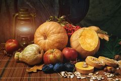 Still life with fruit and pumpkin . Happy Halloween Stock Photos