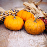 Autumn still life Stock Photo