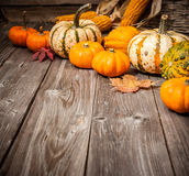 Autumn still life with pumpkins and leaves Stock Images