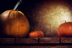 Autumn still life with pumpkins Royalty Free Stock Images