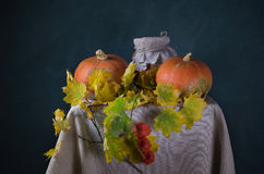 Autumn still life with pumpkins Stock Photos
