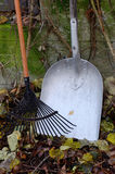 Autumn still life, rake, shovel, and leaves Royalty Free Stock Image