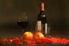 Autumn still life with red wine. Royalty Free Stock Photos