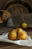 Autumn still life with ripe homegrown pears from rural garden Stock Photos