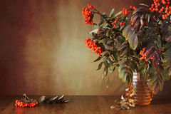 Autumn still life with rowan tree branches in a vase Stock Photo