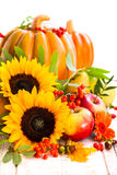 Autumn still life Royalty Free Stock Photography