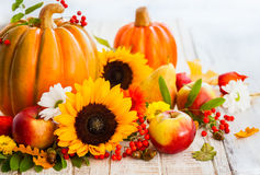 Autumn still life. With seasonal fruits,vegetables and flowers stock images