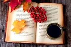 Autumn still life set on wooden table Stock Images