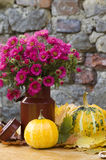 Autumn Still life with squash. Autumn Still life with bunch of pink flowers in an old mug with two yellow squash surrounded by yellow and green leaves on a Royalty Free Stock Photo