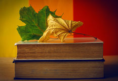 Autumn still life - stack of old books among the dry yellow mapl Royalty Free Stock Images