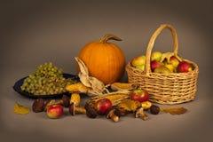 Autumn Still Life Royalty Free Stock Photography