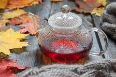 Autumn Still Life: Té en las hojas de arce en una tabla de madera Fotografía de archivo