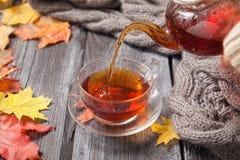 Autumn Still Life: Té en las hojas de arce en una tabla de madera Imagen de archivo