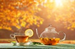 Autumn still life with tea cup on wooden planks Stock Photo