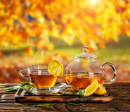Autumn still life with tea cup on wooden planks Royalty Free Stock Image