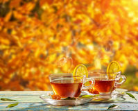 Autumn still life with tea cups on wooden planks Royalty Free Stock Images