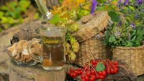 Autumn Still Life With Tea e bacche stock footage