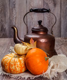 Autumn still life. Tin kettle and pumpkin with leaves stock photography