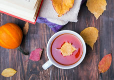 Autumn still life, top view. Stock Images