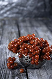 Autumn still life with twigs of viburnum. Royalty Free Stock Photography