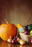 Autumn still life with various fresh vegetables from garden Royalty Free Stock Image