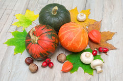 Autumn still life. vegetables, chestnuts, berries, mushrooms and Royalty Free Stock Images